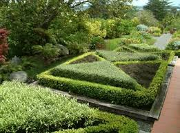 Small Picture Landscape Designer New Malden Kingston Southwest London UK YOUR