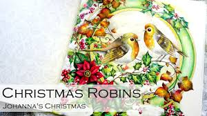 robins coloring book johanna s by johanna basford you