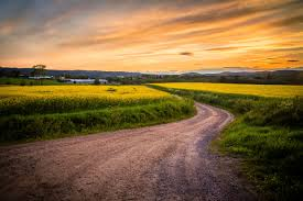 grass field sunset. Wallpaper Horizon, Road, Grass, Field, Sunset, Yellow Flowers » City, Nature, Landscape Photos Grass Field Sunset A