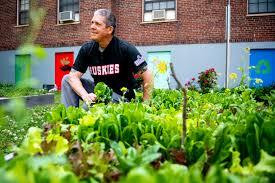 The neighborhood kids were hungry. He planted a garden. - News @  Northeastern