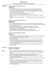 microstrategy resume - merchandise planning resume samples velvet jobs