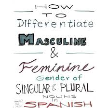 Spanish Singular Plural Chart How To Know If A Word Is Masculine Or Feminine In Spanish