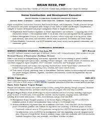 Program Management Resume Examples Sarahepps Com