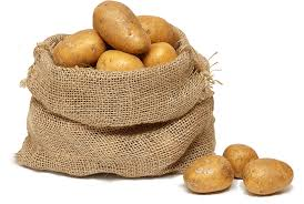 Výsledek obrázku pro rané brambory