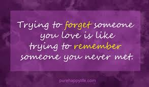 Forget Love Quotes Interesting Love Quote Trying To Forget Someone You Love Is Like Trying