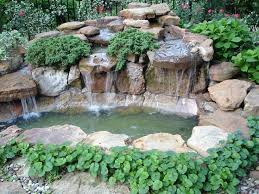 Small Picture 17 best Serenity Pond images on Pinterest Garden ideas Back