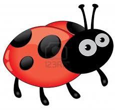 En Couleurs Imprimer Animaux Insectes Coccinelle Num Ro 73985