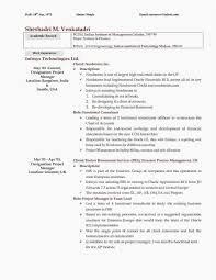 What To Put In Professional Profile On Resume Cto Resume Sample Download Valid How To Write A Resume Profile