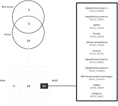 Venn Diagram Fractions Distribution Profile Of Proteins Identified In Mces Fractions Venn