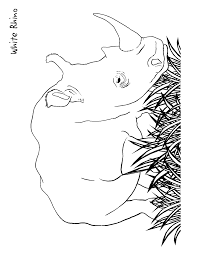 Small Picture Coloring Pages Rhino Coloring Page Education Coloring Pages