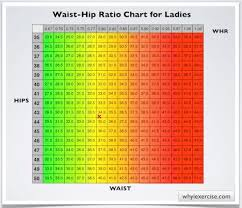Waist Size Chart For Female Waist To Hip Ratio Chart For Ladies Body Measurement Chart