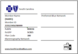 If you are unsure of whether your id number has changed, call customer service at the number listed on your id card. Https Provider Bcbssc Com Wps Wcm Connect A1b0db15 0e5c 48b3 B8e8 97a6d229479b Exchange Member Identification Cards080114 Pdf Mod Ajperes