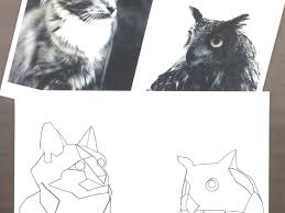 Animal Patterns To Trace Animal Tracing A Fun Drawing Exercise Craftwhack