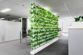 Green office Benjamin Moore Business Benefits Of Green Walls Glassdoor Business Benefits Of Green Walls Ambius Australia Blogambius