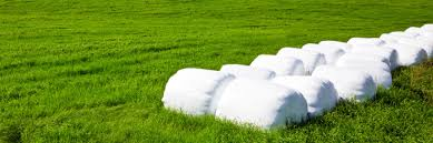 Silage Bags Market Estimated High Revenue By 2016 2024 Zion Market