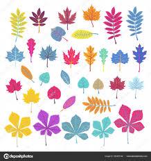 Set Van Oranje Roze Blauwe Bladeren Op Een Witte Achtergrond Eco