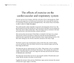 the effects of exercise on the cardiovascular and respiratory  document image preview