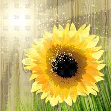 sunflower and grass against wooden fence in summer afternoon vector image vector ilration of backgrounds to zoom