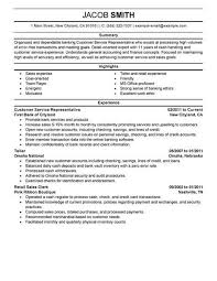 Resume Summary Examples For Customer Service Impressive Best Financial Customer Service Representative Resume Example