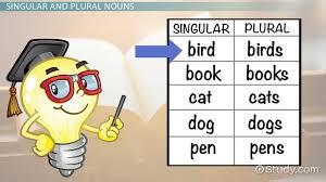 Singular And Plural Nouns Chart Singular Plural Nouns Lesson For Kids