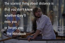 The Notebook Quotes Mesmerizing 48 Most Inspiring Love Quotes From The Notebook Movie SayingImages