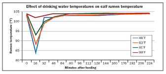 How Much Water Should I Drink Chart How Much Water Should Dairy Calves Drink