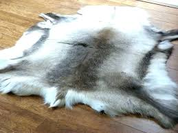 real fur rugs fur rugs animal fabulous selection of high quality hide from a skin rug