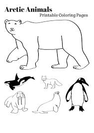 Arctic Animals Worksheets Worksheets for all | Download and Share ...