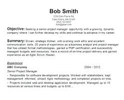 opening objective for resume resume career objectives opening objective for resume resume writing