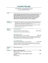 resume introduction objective marketing resume objectives