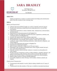 Resume Examples 2016 Best Resume Format 60 Free small medium and large images 11