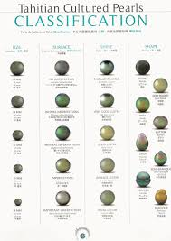 Tahitian Pearl Grading Chart Know What You Are Buying
