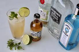 moscow mule with gin tail drink