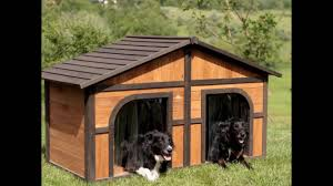 Creative Dog Houses 2 Dog House 58 With 2 Dog House Home