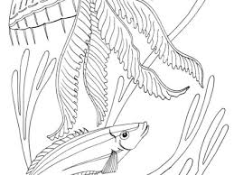 46 Ocean Coloring Pages Printable Ocean Creatures Coloring Pages
