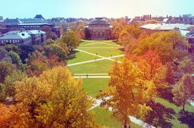 University Of Illinois At Urbana Champaign Colleges Noodle