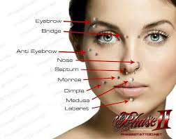 Facial Piercing Chart Face Piercings Names And Pictures Google Search In 2019