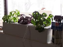 window herb garden