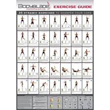 Power Plate Wall Chart Bodyblade 20in X 28in Full Color Wall Chart