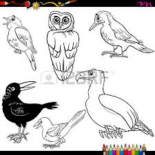 Small Picture 657 Magpie Cliparts Stock Vector And Royalty Free Magpie