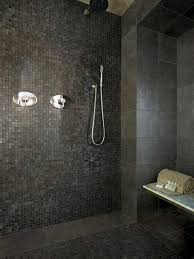 Small Picture 80 best shower images on Pinterest Bathroom ideas Stains and