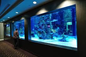aquarium office. NYC Office Tank Aquarium