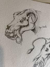 ArtStation - Skull Creatures, Kyra Schneider