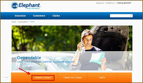 Elephant Auto Insurance Quote Gorgeous Elephant Car Insurance Quote Elegant Elephant Insurance Picture And