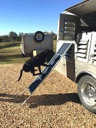 dog ramp for truck bed diy beds