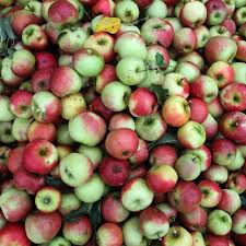 there s much more to apples than meets the eye the salt npr more on apples
