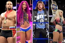 Image result for wwe superstar male and female