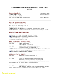 Lovely Resume Template Malaysia Best Templates