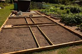 how to prepare a vegetable bed