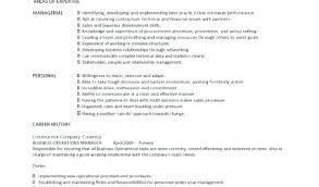 Construction Operation Manager Resume Par Chance Operation Manager Resume Template Best Inventory